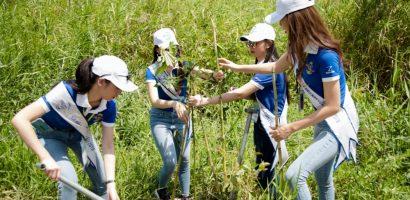 Thí sinh Hoa hậu Biển ăn mặc giản dị, 'đội nắng' trồng cây ở U Minh Thượng