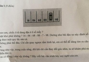 Câu hỏi Toán vào đề thi học sinh giỏi Ngữ văn ở Sài Gòn