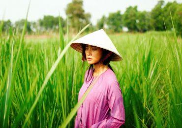 Miệt mài tại phim trường, Ngô Thanh Vân đành lỡ hẹn với Cánh diều 2017