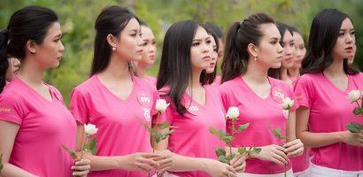 Thí sinh Hoa hậu Việt Nam mang hoa trắng tới viếng mộ Hàn Mặc Tử